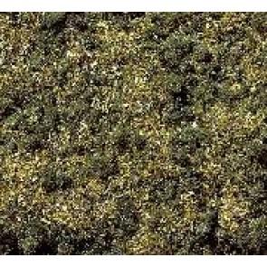 Noch 08350 Streugras Waldboden