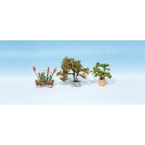 Noch 14020 Zierpflanzen in Blumentöpfen