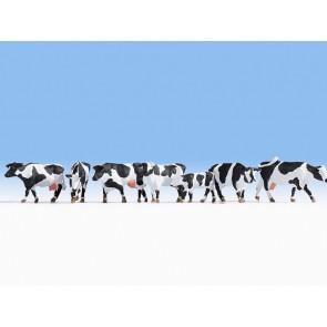 Noch 15725 Kühe, schwarz-weiß