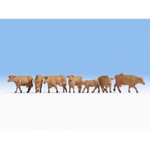 Noch 15727 Kühe, braun
