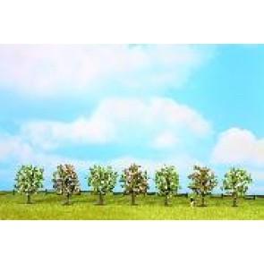 Noch 25092 Obstbäume blühen, 7 St., 8 cm
