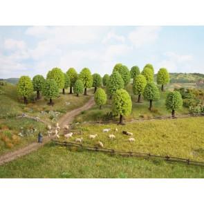 Noch 26801 Laubbäume, 25 db, 5 - 9 cm hoch